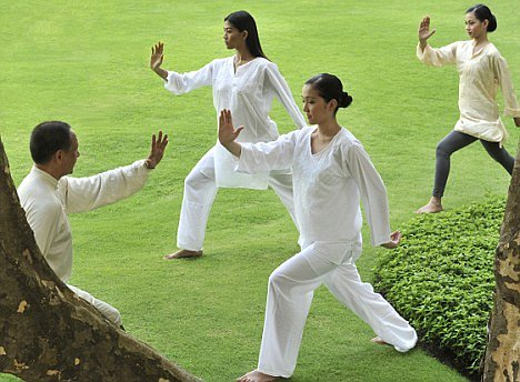 Tai Chi Practice Guidance